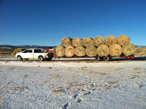 Customers Flatbed Trailer with 20 Hay Bales